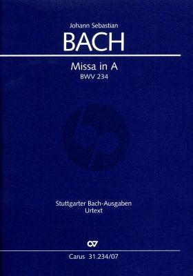 Bach Missa A-Dur BWV 234 Kyrie-Gloria-Messe (Lutherische Messe) (lat.) (Studienpartitur) (Ulrich Leisinger)
