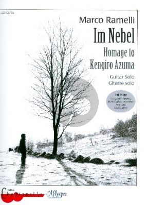 Ramelli Nebel - Novi Sad 2013 (Homage to Kengiro Azuma) Guitar