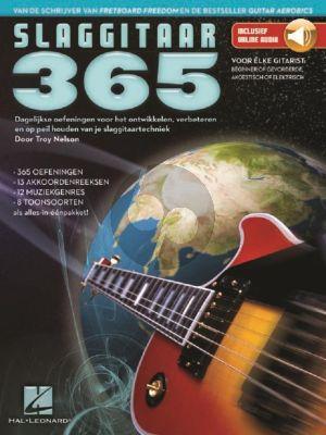 Nelson Slaggitaar 365