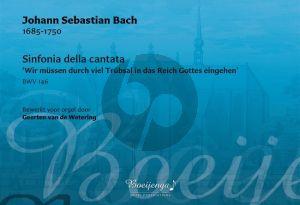 Bach Sinfonia della cantata Wir müssen durch viel Trübsal in das Reich Gottes eingehen BWV 146 Orgel