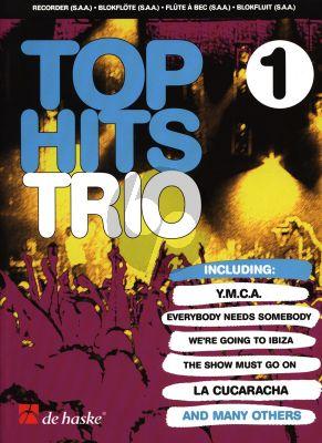 Beringen Top Hits Trio 1 3 Recorders (SSA)