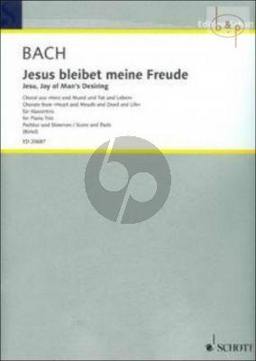 Jesus bleibet meine Freude (Jesu, Joy of Man's Desiring) (from BWV 147)