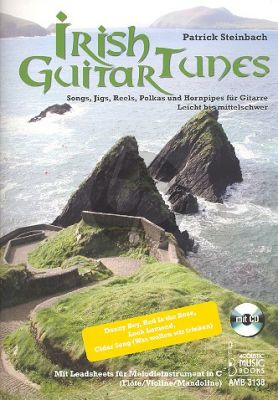 Steinbach Irish Guitar Tunes (Songs, Jigs, Reels, Polkas and Hornpipes)