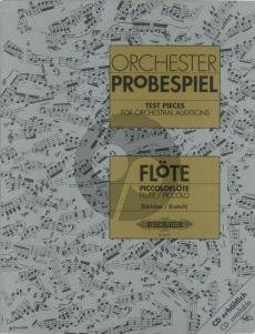Orchester-Probespiel für Flöte[Piccolo])