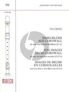 Medek Nebelbilder aus Cornwall (for 1 - 3 Recorders) (SSA) (Score)